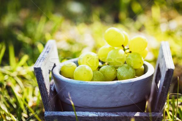 Uvas cesta hierba vino frutas verano Foto stock © mythja