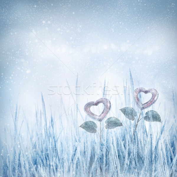 Valentines frozen hearts Stock photo © mythja