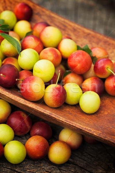 Vers wild pruim vruchten tuin vers Stockfoto © mythja