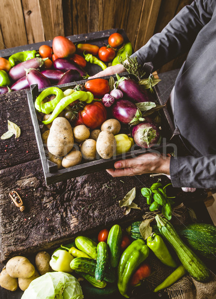Landbouwer courgette organisch groenten boeren handen Stockfoto © mythja
