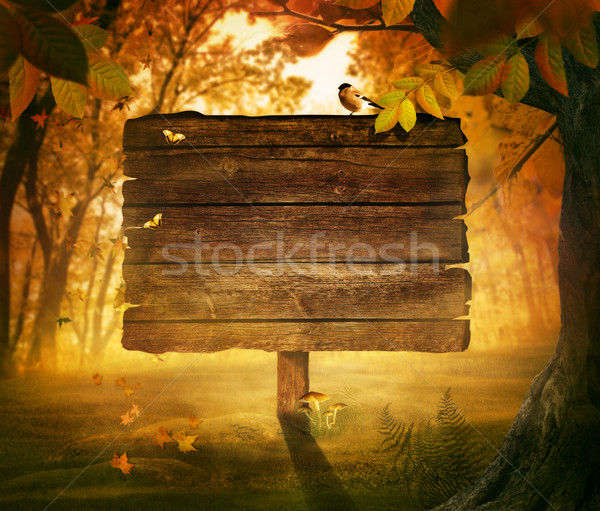 Autumn design - Forest sign Stock photo © mythja