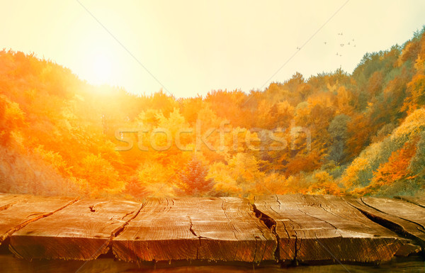 Tabletop with falling leaves. Autumn table with forest. Table in Stock photo © mythja