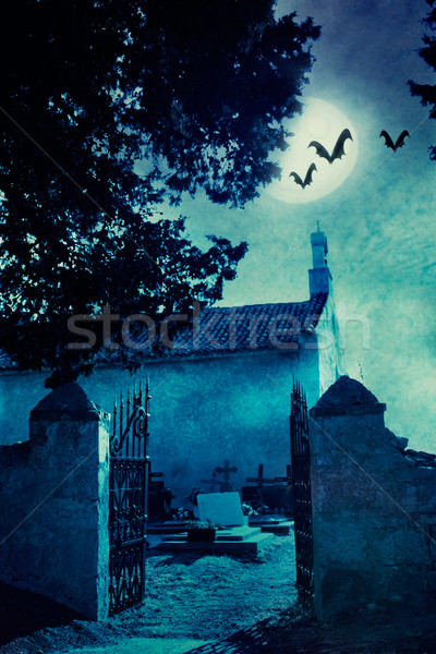 Halloween illustration with graveyard Stock photo © mythja