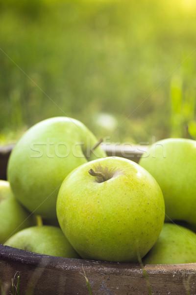 Stok fotoğraf: Elma · çim · organik · sepet · yaz · taze