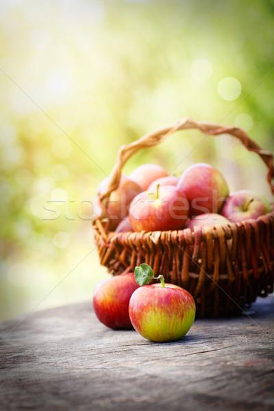 Taze üzüm taze hasat elma doğa Stok fotoğraf © mythja