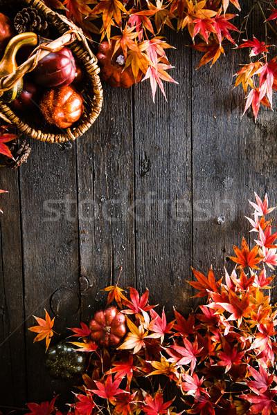 Stock foto: Herbstlaub · Holz · fallen · rot · Blätter · Natur