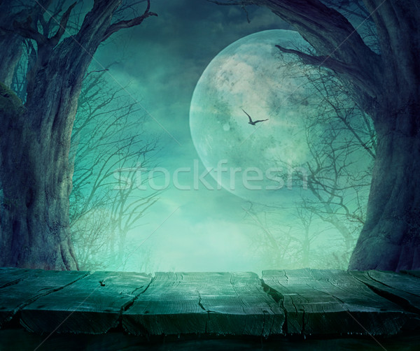 Halloween Spooky Forest Stock photo © mythja