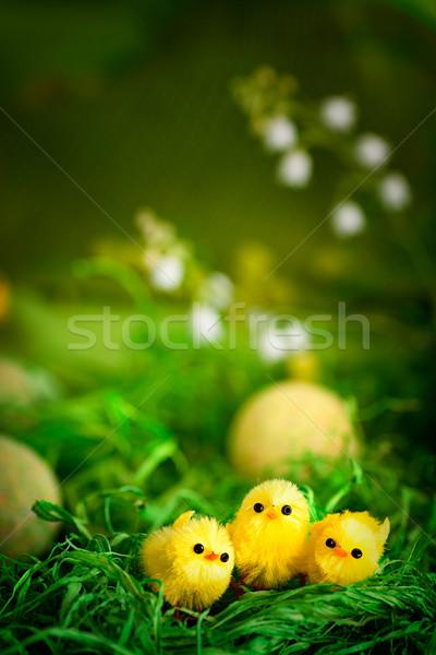 Пасху цыплят желтый весны долины цветок Сток-фото © mythja