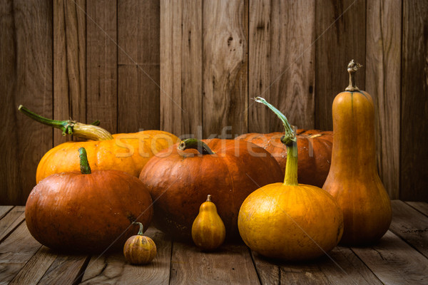 Pumpkins variety Stock photo © mythja
