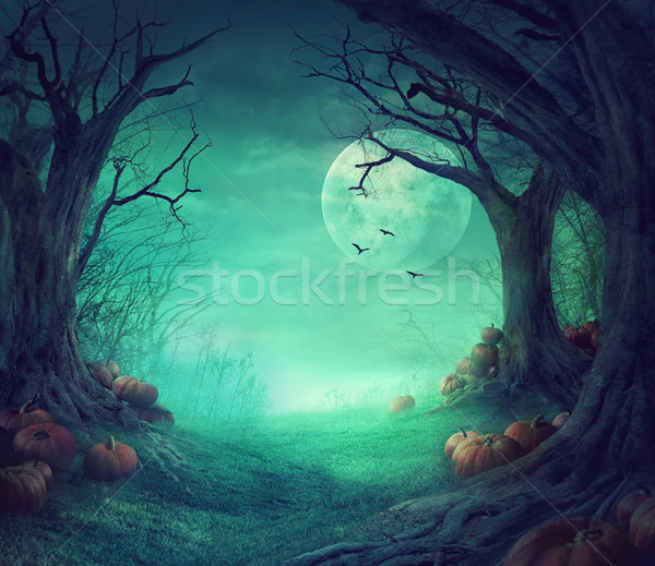 Halloween design Stock photo © mythja