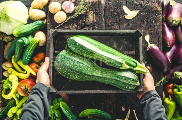 Landwirt Zucchini Gemüse Hände Stock foto © mythja