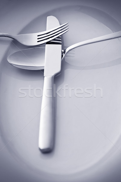 Restaurant Menu concept Stock photo © mythja