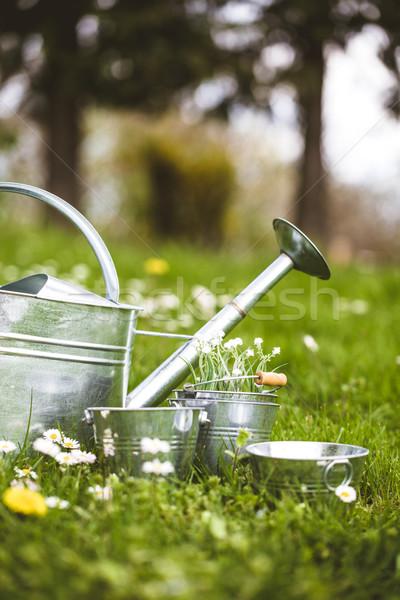 Stock fotó: Tavasz · kert · víz · konzerv · cseresznye · virágok