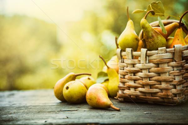 Autumn pears Stock photo © mythja