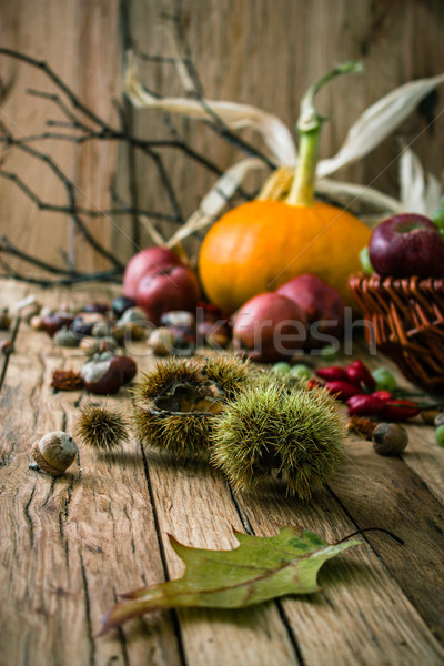 Сток-фото: осень · фрукты · благодарение · сезонный · природы · древесины