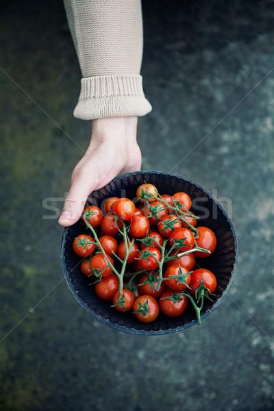 Fresh tomatoes Stock photo © mythja