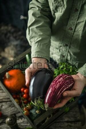 Farmer with aubergine Stock photo © mythja