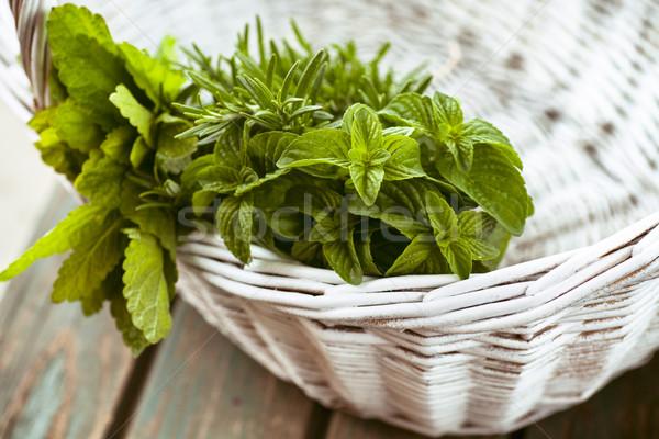 Stockfoto: Vers · kruiden · rosmarijn · mint · rustiek · voorjaar