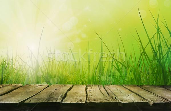 ストックフォト: 木製のテーブル · 春 · 草 · ぼかし · 夏 · 自然