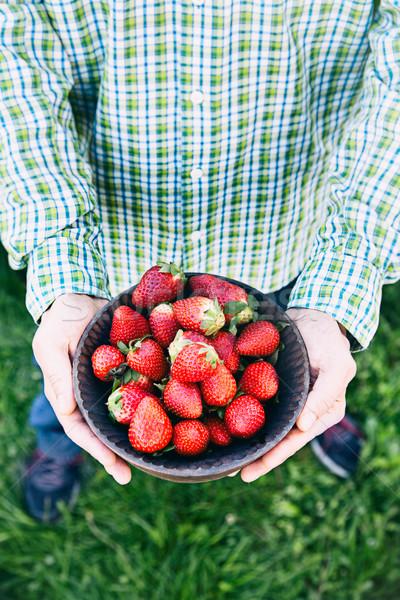 新鮮な イチゴ 農家 新鮮果物 ボウル フルーツ ストックフォト © mythja