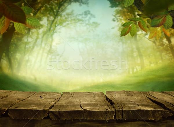 Primavera verde hierba verde arte diseno Foto stock © mythja