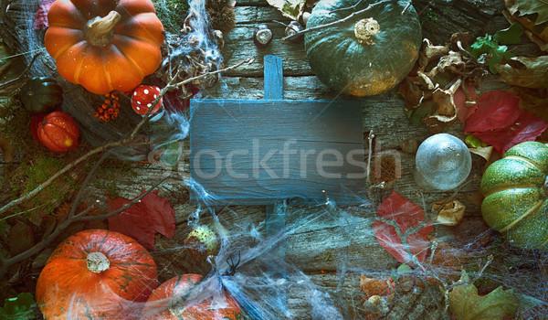 Convite halloween festa aviador espaço árvore Foto stock © mythja