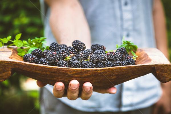 Jeans orgânico fruto agricultores mãos Foto stock © mythja