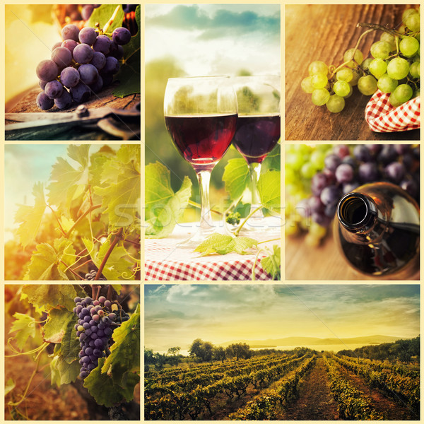 Photo stock: Pays · vin · collage · rustique · raisins · vignoble