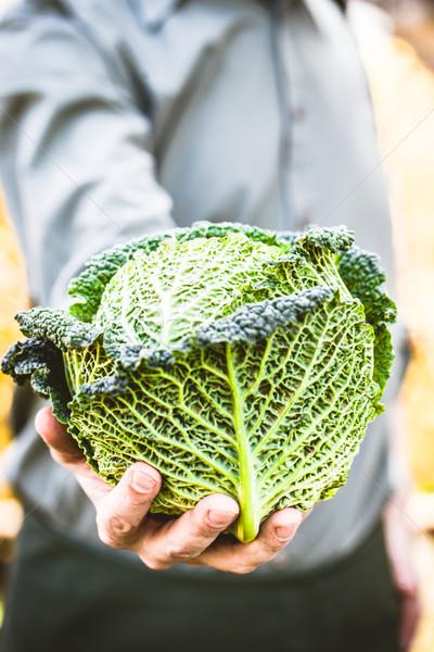Farmer with kale Stock photo © mythja