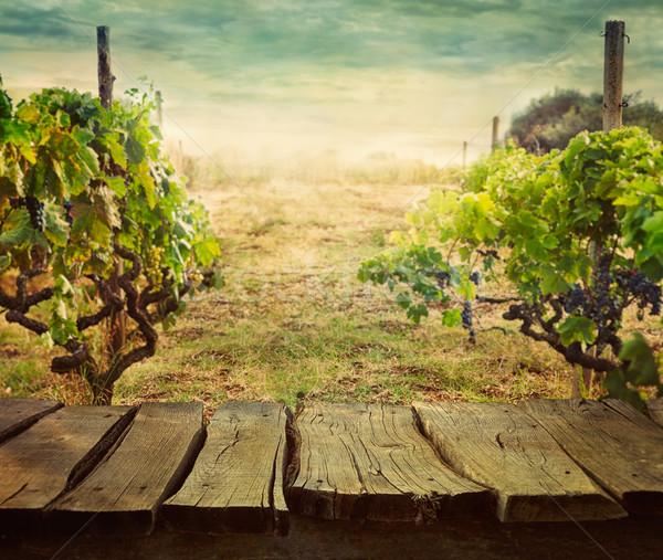 Stock fotó: Szőlőskert · fa · asztal · tavasz · terv · üres · kirakat