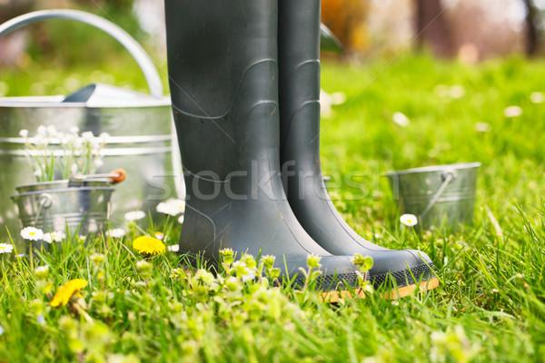 Spring garden Stock photo © mythja