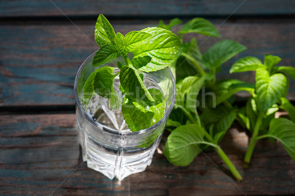 Fizzy drink with mint Stock photo © mythja
