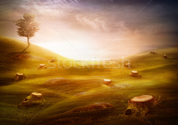Ecology & environment design - Forest destruction Stock photo © mythja