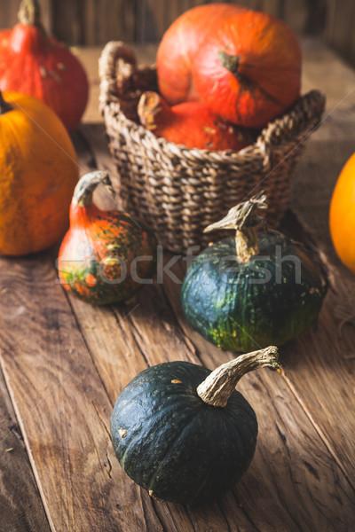 Pumpkins variety on table. Thanksgiving decoration Stock photo © mythja