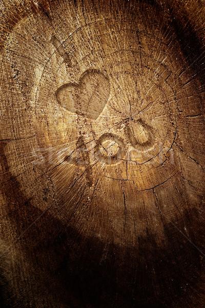 Love text on  wooden background Stock photo © mythja