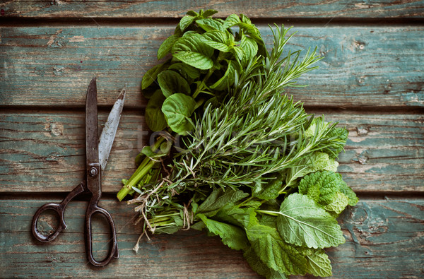 Fresh herbs Stock photo © mythja