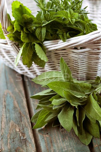 Friss gyógynövények rozmaring menta rusztikus tavasz Stock fotó © mythja
