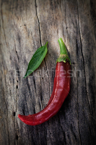 Fresh red chili pepper Stock photo © mythja