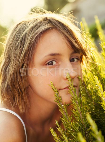 Meisje rosmarijn tuin mooie meisje zomer Stockfoto © mythja