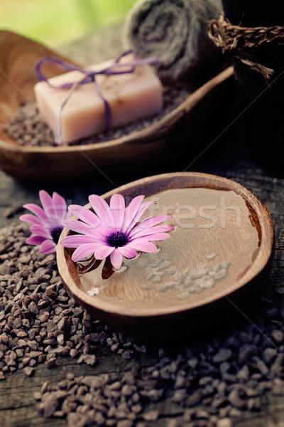 violet dayspa nature set Stock photo © mythja