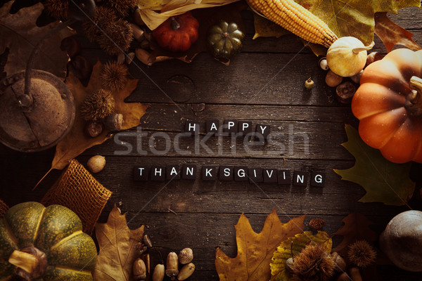Thanksgiving background Stock photo © mythja