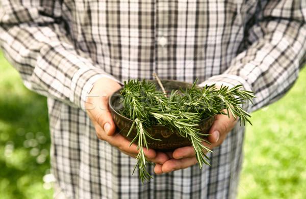 Farmer with rosemary Stock photo © mythja