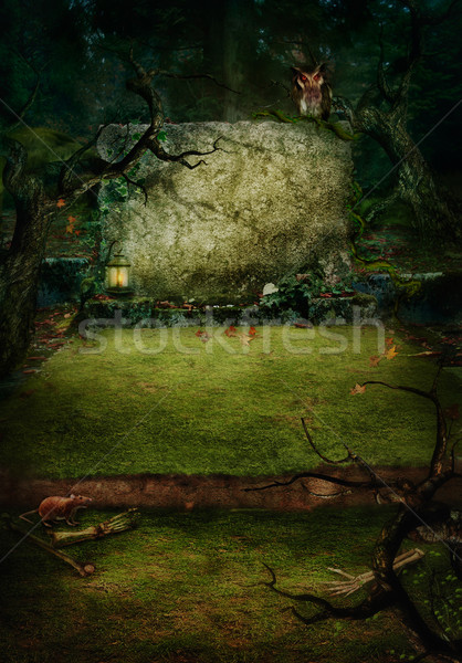 Halloween design - Forest grave Stock photo © mythja