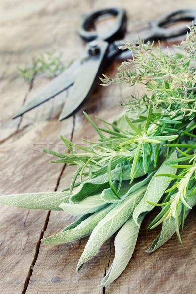 Herbes vieux antique ciseaux bois Photo stock © mythja