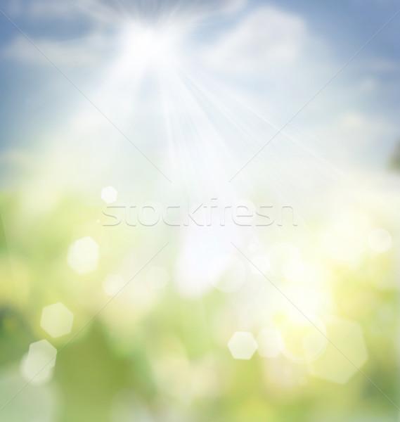 Voorjaar bokeh zomer abstract natuur gras Stockfoto © mythja