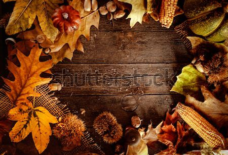 Thanksgiving day dinner Stock photo © mythja