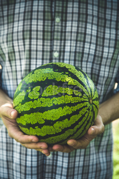 Farmer with watermelon Stock photo © mythja