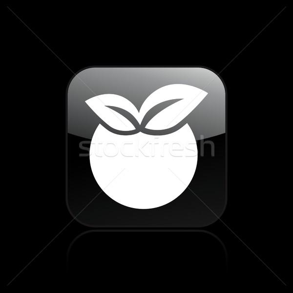 Alma ikon gyümölcs mezőgazdaság barack vektor Stock fotó © Myvector
