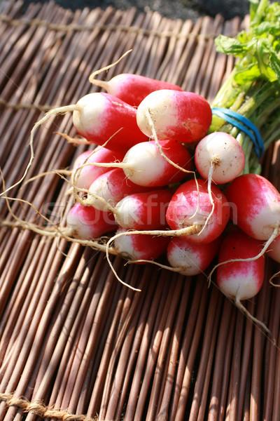 Fraîches radis organique laisse Photo stock © naffarts