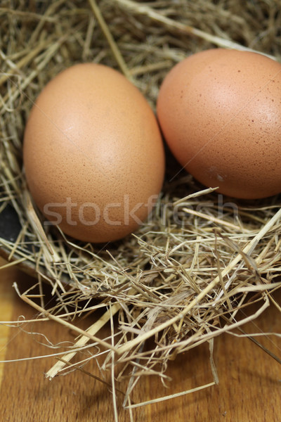 Brown Eggs Stock photo © naffarts